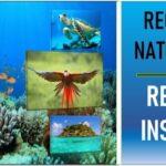 recursos naturales de Colombia Region Insular