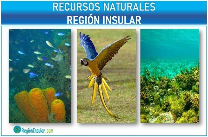 Cuales son los recursos naturales de la Region Insular