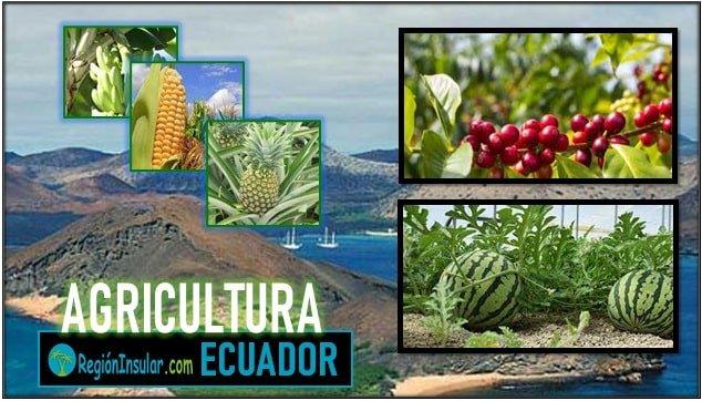 Agricultura de la region insular del Ecuador